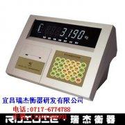 瑞杰3190-DS3称重控制仪表